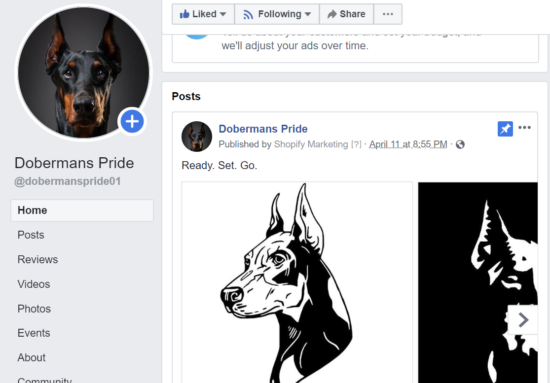 Dobermans Pride | Sold Store | Starter stores Business