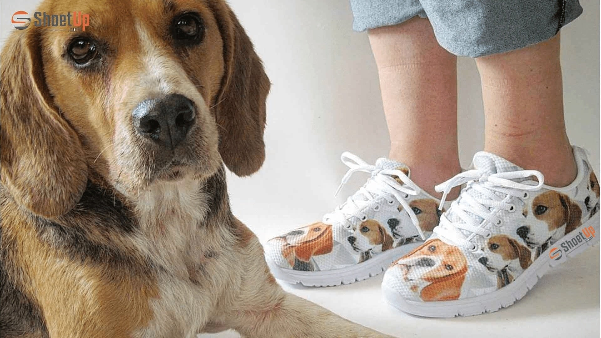Shoetup Shoes PET Products. Valued at over $50,000. Quit Your Job & Run a Shoe Empire! Screenshot - 2